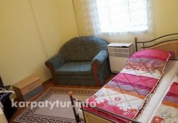 Дом посуточно в Берегове