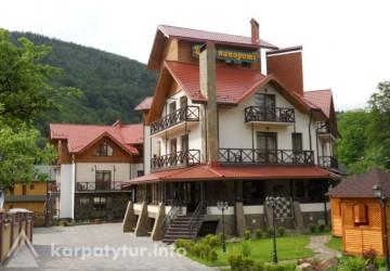 Отель Цвит папороти