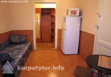 Отличный 1-комнатный люкс, в центре города. Евроремонт, wi-fi...